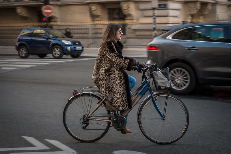 Panthère à vélo