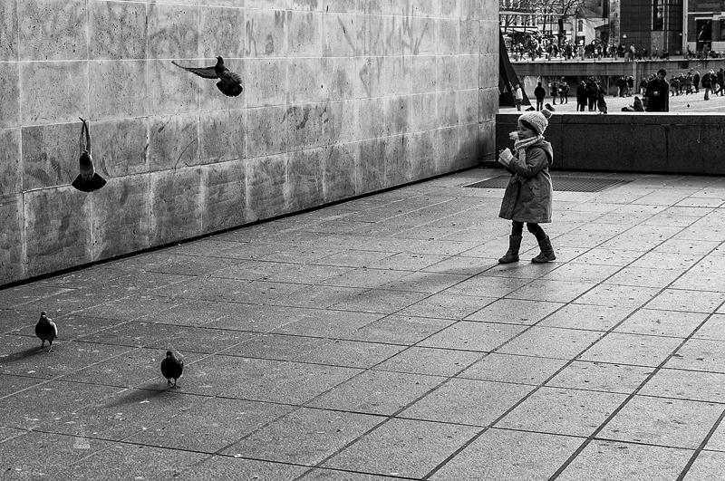 Faire peur aux pigeons
