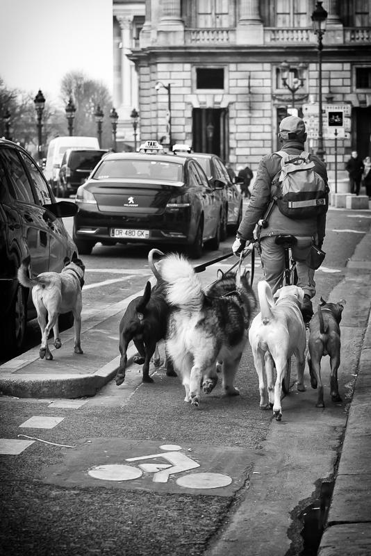 Promenade de groupe