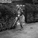 Le jardinier des Tuileries