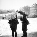 Tombe la neige / Jardin du Luxembourg