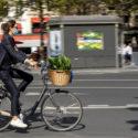 Le vélo et la plante verte